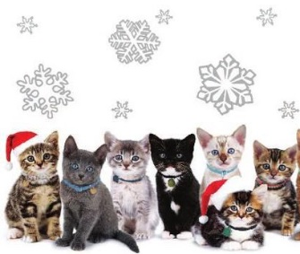 7 Gifts That Give Back To Animal Charities