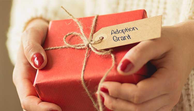 adoption grant