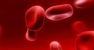 ayurveda anemia