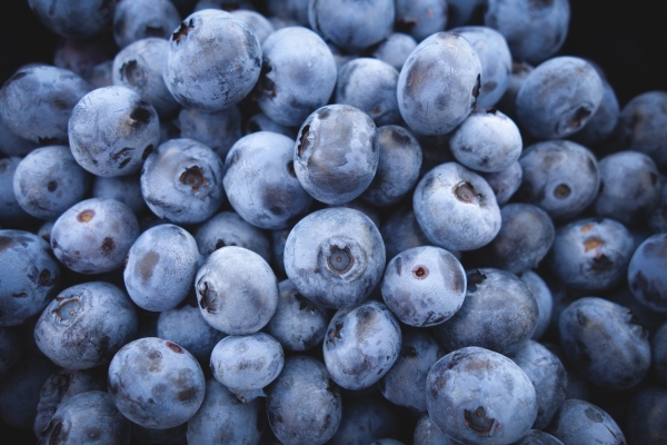 Pitta diet includes sweet fruits like blueberries.