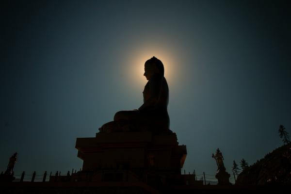 Vignyanamaya Kosha: Cultivating Discernment With Ayurveda