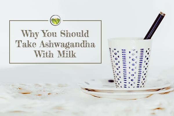 Why You Should Take Ashwagandha With Milk