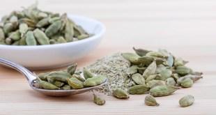 Ayurvedic Herbs, Ayurvedic Herb, Ayurveda Herbs, Cardamom.