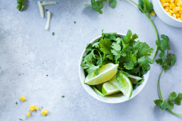 Cilantro and lime, pitta diet for summer.