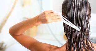 Ayurvedic hair