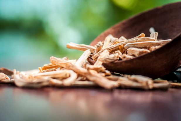 shatavari herb for summer, shatavari benefits are numerous. Learn more about its side effects, dosage, and shatavari root powder