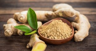 dry ginger powder benefits uses