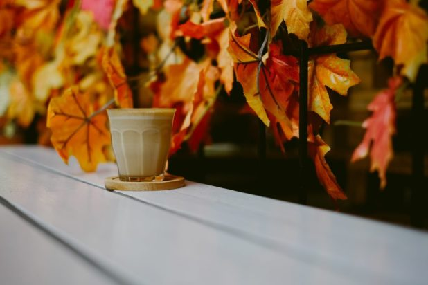 healthy ayurvedic drinks for fall