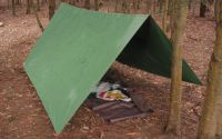 Tarp Camping 101 (An Easy Guide For The Minimalist)