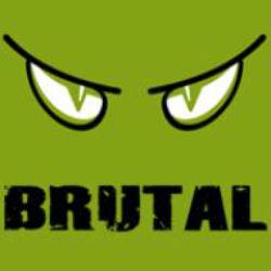 Brutal Race Series