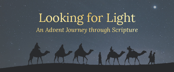 In search of Mild: An Introduction Journey by way of Scripture - Bible Gateway Weblog