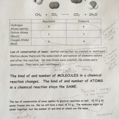 Law Of Conservation Mass Diagram Audi A2 Wiring Vivresaville New Worksheet Answers Goodsnyc