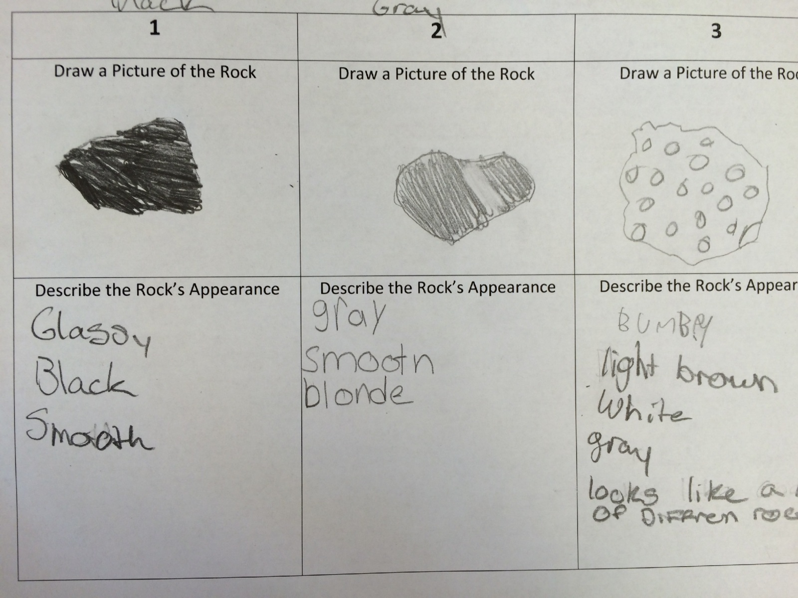 hight resolution of Fifth grade Lesson Rock Cycle   BetterLesson