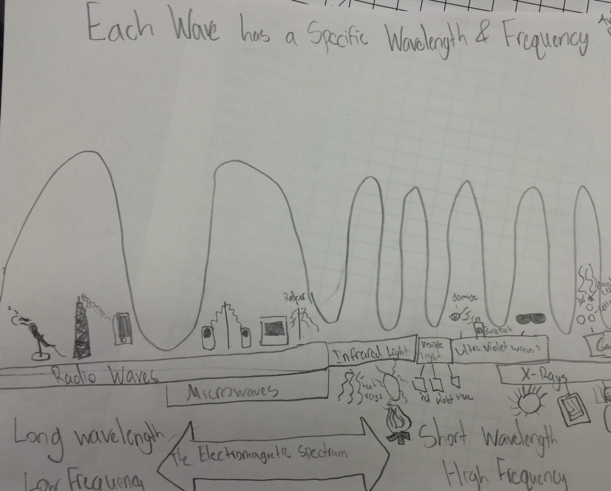 hight resolution of Lesson The Electromagnetic Spectrum   BetterLesson