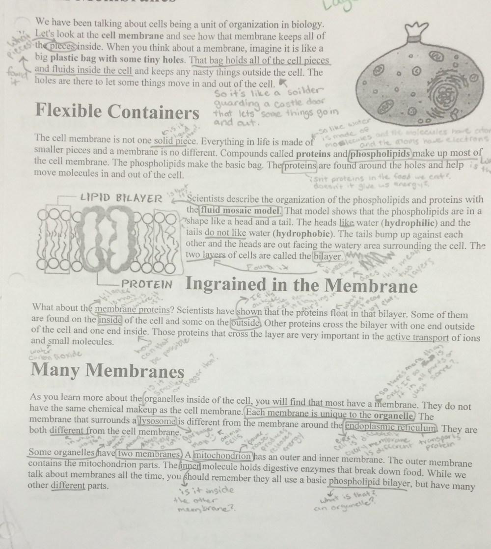 medium resolution of Lesson Insane in the Membrane   BetterLesson