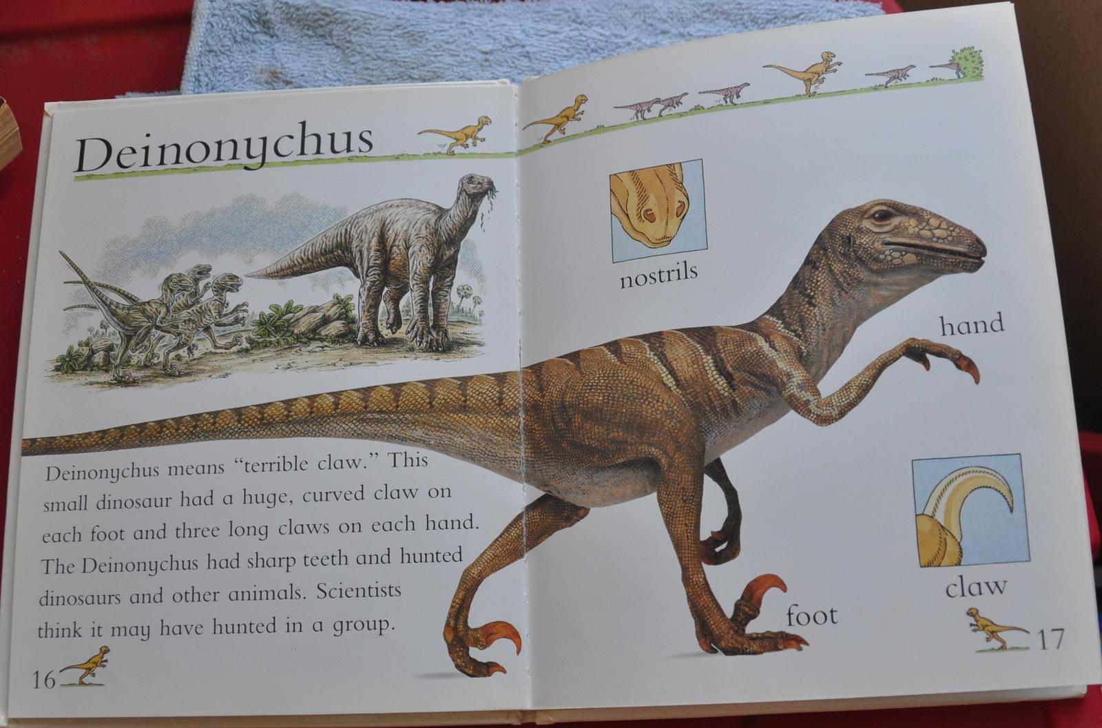 For The Dinosaur Lover