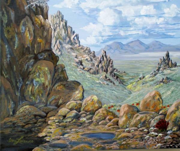desert rocks lichen and wild flowers