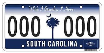 Image result for south carolina license plate