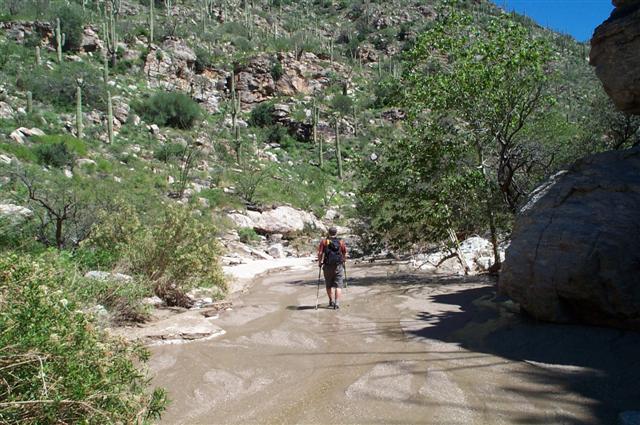 Molino Canyon
