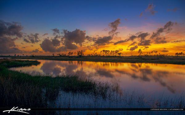 beautiful florida landscape sunset