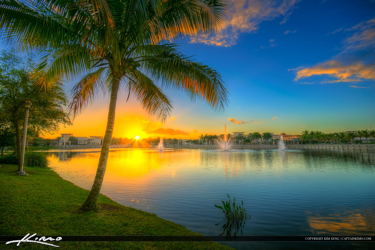 Florida Beach Fall Wallpaper Downtown Gardens Lake Victoria Coconut Tree Sunset