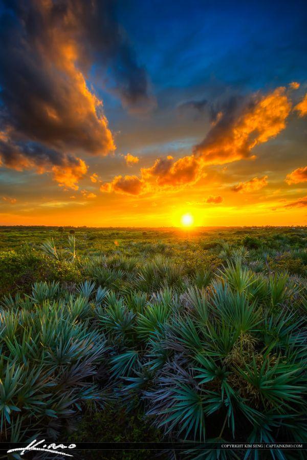 juno dunes natural area sunset