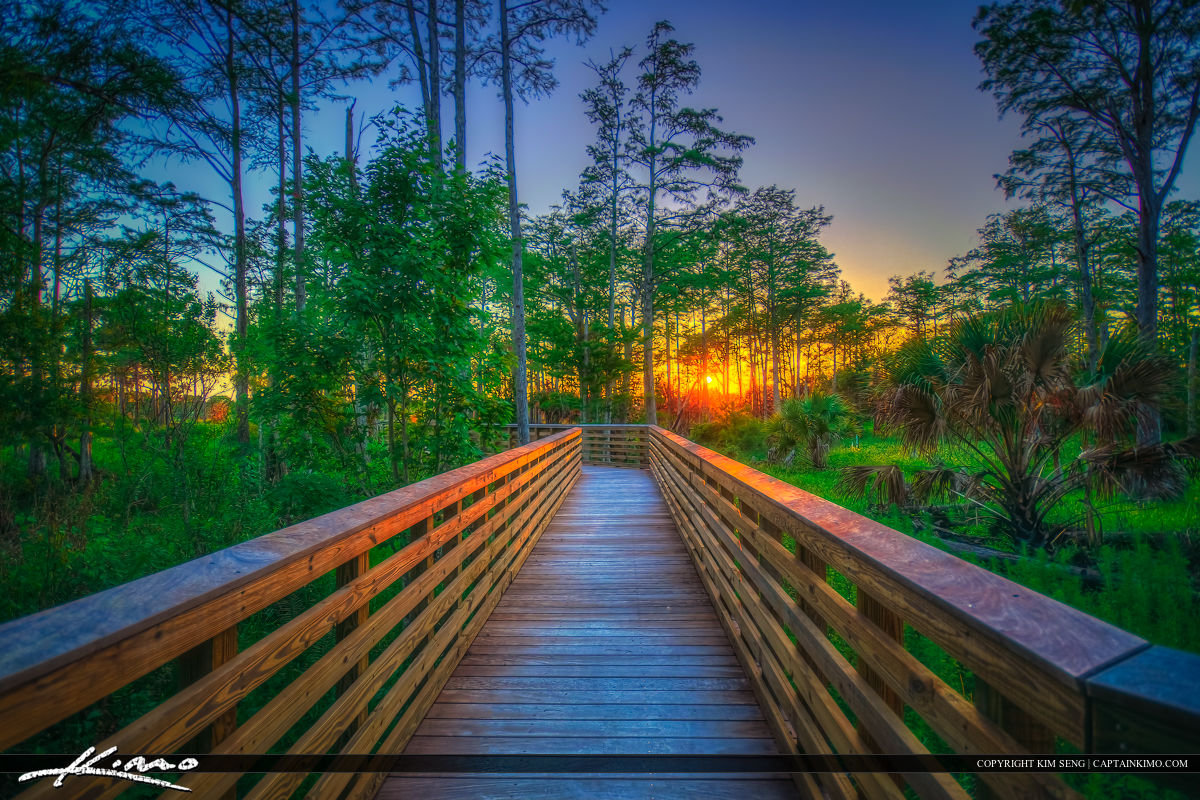 Sunset Boardwalk at North Jupiter Flatwoods Natural Area