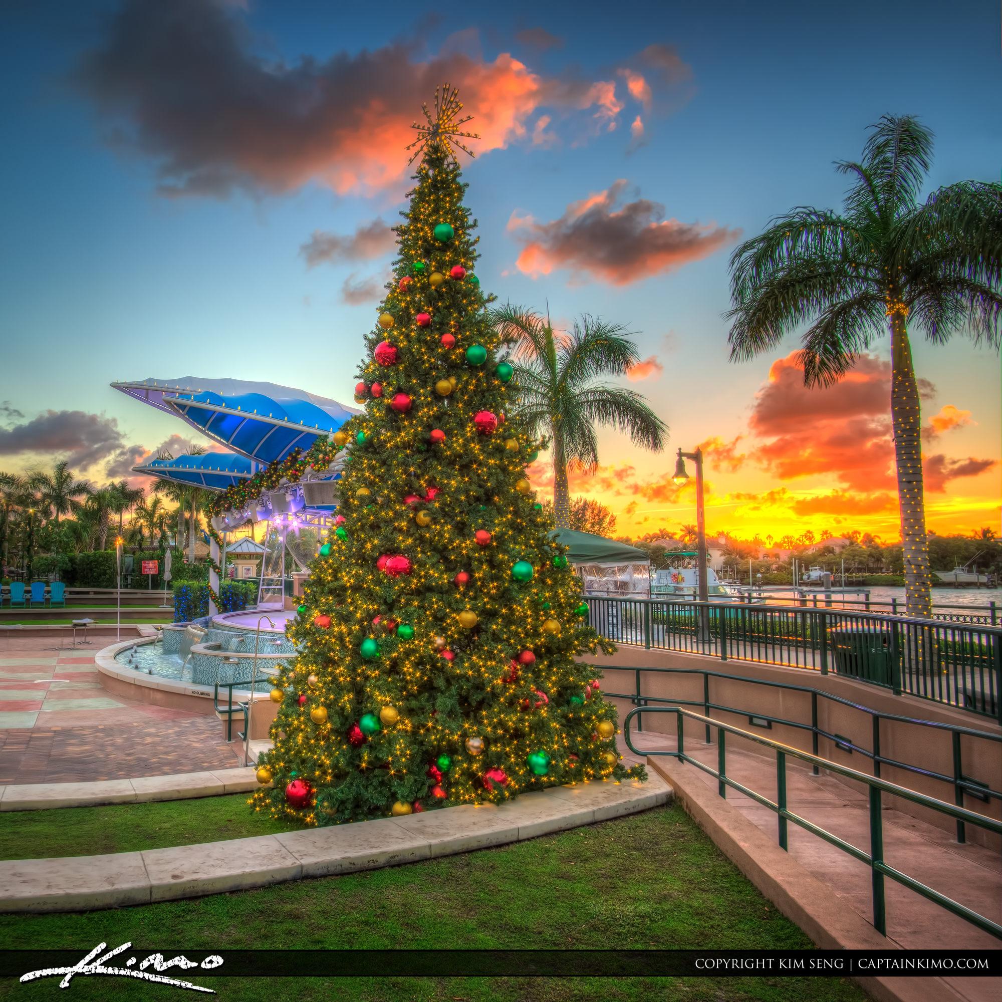 Christmas House Lights