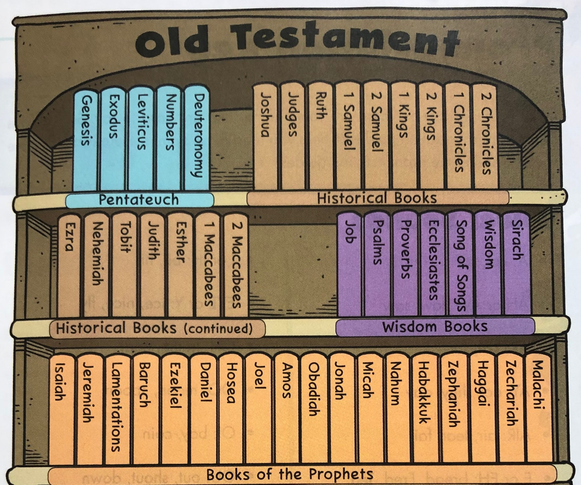 hight resolution of Bible Stories - Catholic Teacher Resources