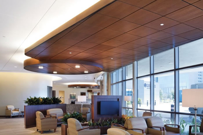 Capitol Building Supply Inc  Acoustical Ceilings