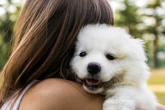 Risultato immagini per 5 Scientific Ways Having A Pet Helps You Be A Better Person
