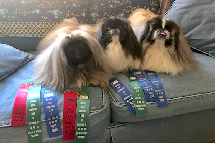 all 3 with ribbons