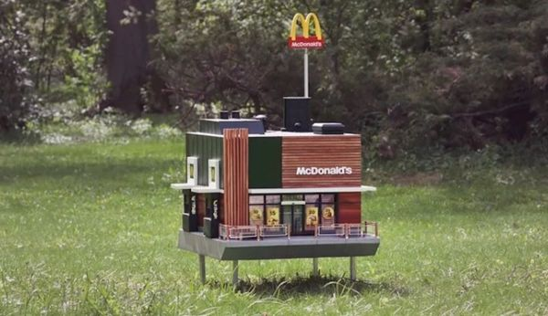 McDonald's for bees