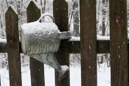 watering-can-on-fence-with-ice