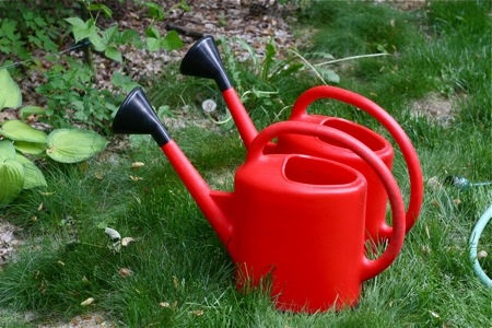 two-red-watering-cans