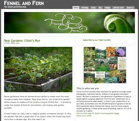 fennel-fern