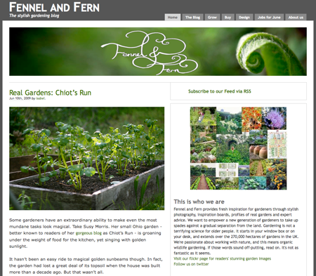 fennel-fern