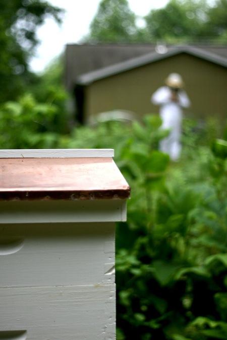 Beekeeper_in_Suit_behind_hive