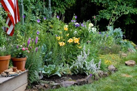 Front_Foundation_Garden