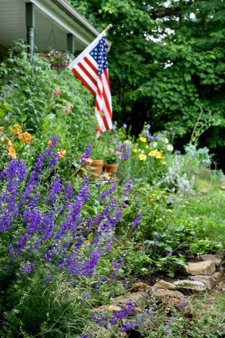 Front_flowerbed_with_Flag