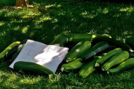 Free_zucchini