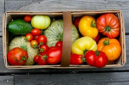 Garden_harvest_basket