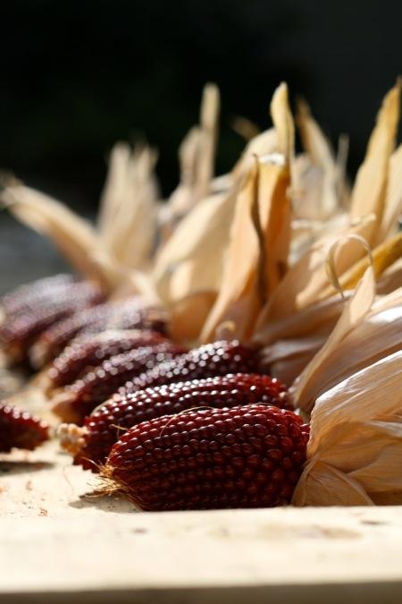 strawberry_popcorn