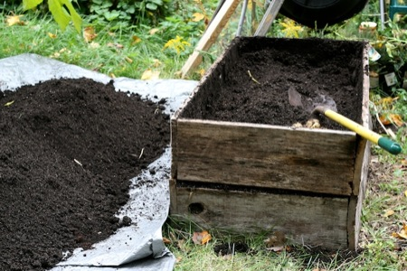 Harvesting_Raised_potato_beds