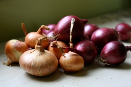 Onions_from_local_roots_market