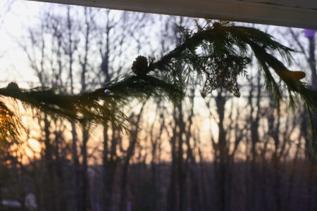 sunset_on_pine_garland