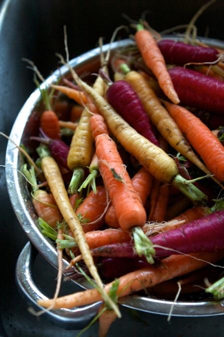 winter_carrots