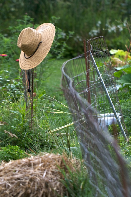 hat_on_fence