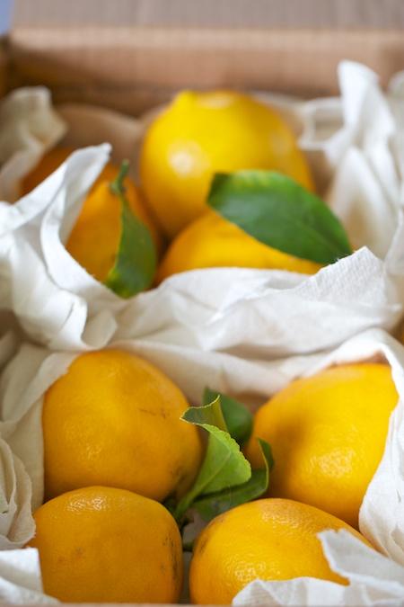 box_of_lemons