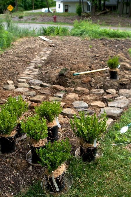 building_rock_pathways_in_the_garden 5